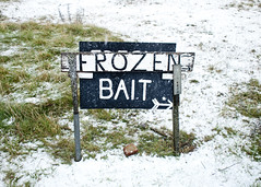It's not the only thing. (lissyloola) Tags: snow frozen fishing type dungeness olympuspen bait ep1 aptsign