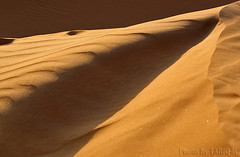 Sand abstract - Explore (TARIQ-M) Tags: shadow abstract texture landscape sand waves desert dunes riyadh saudiarabia hdr        canonef70200mmf4lusm    canon400d      naturespotofgold   mygearandme