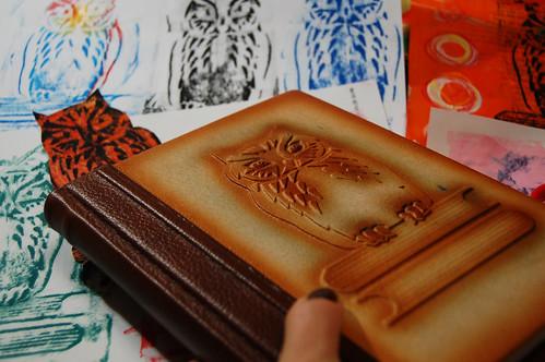 Owl diary