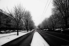 100124_Amsterdam_Wiking_(Mehmet_Saydam)_001 (Equinoxe17) Tags: family orange holiday snow netherlands amsterdam cities paysbas nederlands umur kar hollanda saydam geocity exif:focal_length=24mm exif:iso_speed=1000 camera:make=nikoncorporation camera:model=nikond700 exif:make=nikoncorporation exif:model=nikond700 geostate geocountrys exif:lens=240mmf28 exif:aperture=22 mehmetsaydam