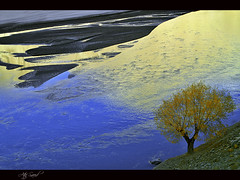 Alone... (M Atif Saeed) Tags: blue autumn pakistan mountain reflection tree fall nature water yellow river landscape sand alone areas northern northernareas gilgit skardu atifsaeed gettyimagespakistanq1
