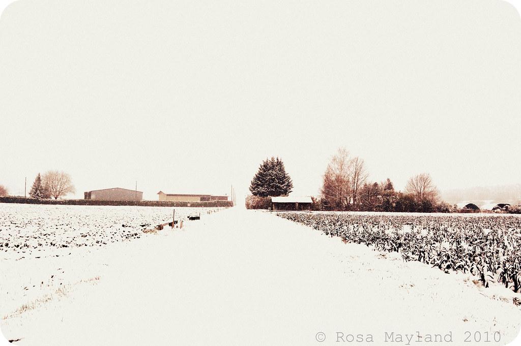 Snow Veyrier 10.1 bis