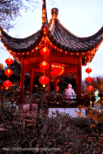 Magic of Lanterns @ Chinese Garden