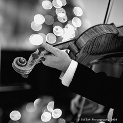 VIRTUOSO (Marquisa -) Tags: xmas bw music film monochrome analog greek nikon photographer dof bokeh tx houston atmosphere f100 violin carol svetlanavasiliadi russiantexas svetan svetanphotography
