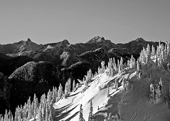 I've been there... (Christopher J. Morley) Tags: trees bw snow ski mountains vancouver tracks brunswick harvey lions peaks seymour hanover 41 ridges birthdaypresent wanderung alw tomyself achromatic