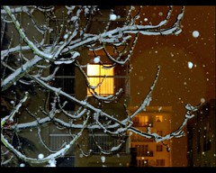 Rear window (manu/manuela) Tags: windows snow paris france home night lights casa hiver neve neige luci wintertime inverno nuit notte neighbourhood acasa intimacy lumires fentres finestre voisinage voisins sweethome vicini intimit environsdeparis nearbyparis