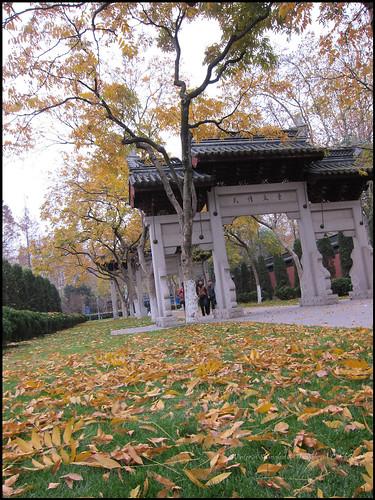 2010-12-08 Shanghai 083P03