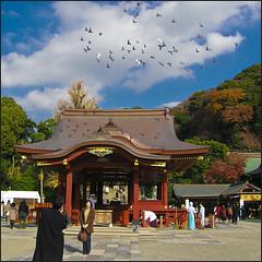 Kamakura (cuoredimenta) Tags: japan kamakura kanagawa giappone ktokuin