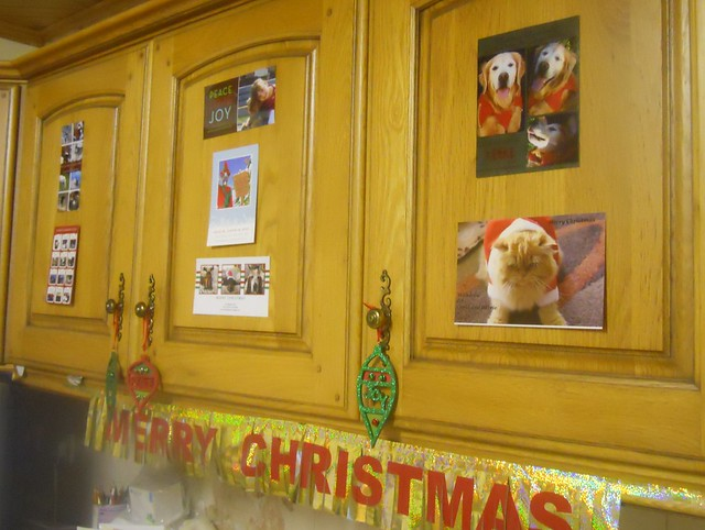 Christmas 2010 (22)