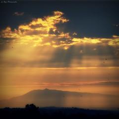 Morning light (Le***Refs *PHOTOGRAPHIE*) Tags: morning light bird clouds montagne sunrise de soleil nikon sunrays rayon montain oiseaux levedesoleil montventoux d40x lerefs