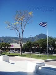 El Salvador del Mundo005