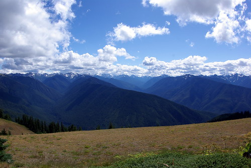 2010-08-28 Hurricane Ridge (25)