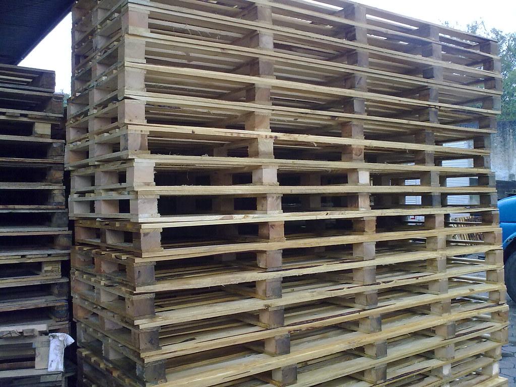 Paletes 1 00m x 3 00m (Tarin Paletes) Tags: garden cola rack pbr prego  #4A5F73 1024x768