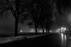 .. (ICT_photo) Tags: trees snow ontario fog night path ictphoto ianthomasguelphontario