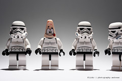 2/365 Homer sometimes nods (photography.andreas) Tags: macro canon germany deutschland photography starwars lego minifig minifigs saarland minifigure stormtropper project365 httpcreativecommonsorg eos40d canoneos40d canonefs1855mmf3556is urweiler httpphotographyproject365wordpresscom