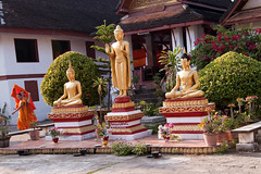 Laos - 045 (Louisa M) Tags: shrine stupa monk budha laos luangprabang budhism louangphrabang themple watmai
