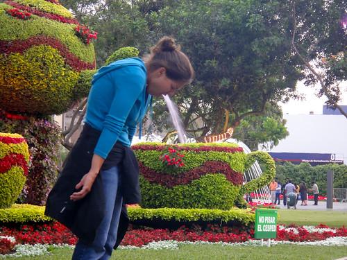 Wendy Barfing into Tea Cup Fountain in Parque de La Reserva