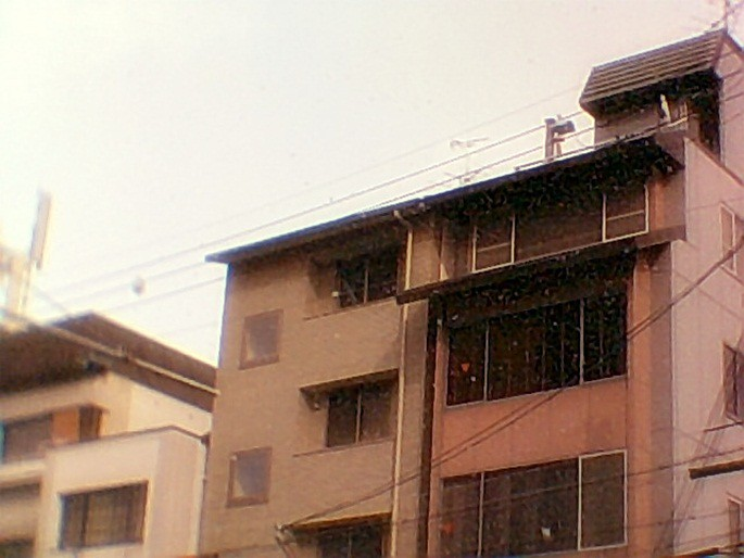 Kyoto jan 2011