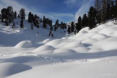 Baranci sotto la neve (Carlo Quadrini) Tags: nikon tokina 1224 d90