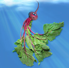 Beethany, the Jellyveggie (RєRє) Tags: red food playing silly cute art vegetables goofy fun funny jellyfish with humor vermelho veggies veggie beet bete anthropomorphic playingwithfood beterraba rote vegetais anthropomorph betterave antropomórfico antropomorfico pancar anthropomorphe barbabietola betroot brincandocomacomidablog beethany jellyveggie blowfruit
