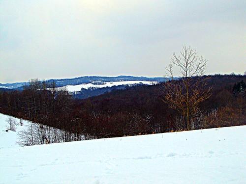 Hilltop Vista 2