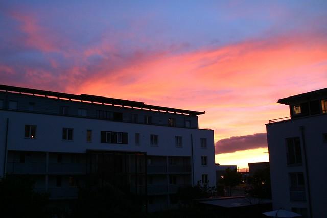 Rieselfeld sunset I