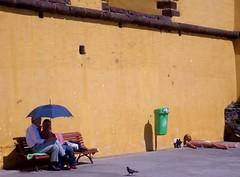 points of view (sognocalifornia) Tags: portugal yellow umbrella amarelo giallo castelo sole madeira sunbathing funchal ombrello puntidivista pointsofview