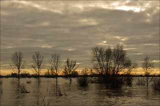 Flooding along the river