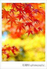 () Tags: japan olympus zuiko e30    40150