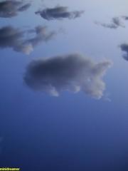 unicorn cloud :P - nube unicornio :P (minidreamer ♫) Tags: unicornio unicorn nube nuage cloud nubes clouds cielo sky ciel landscape paisaje bluesky cieloazul europe europa eyeinthesky ojoenelcielo nuages dscw300 tranquility tranquilidad quietud stillness peace paz skies cielos algodon cotton azucarhilado belleza beauty amazing asombroso astonishing alucinante brilliant mindblowing unbelievable increible miracle milagro strangeclouds nubesextrañas nubeextraña strangecloud figuraenelcielo figureinthesky