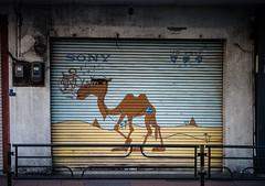 It's a Sony, Asakusa ( monkeys with cameras (AKA Marx)) Tags: japan shop tokyo sony camel shutter asakusa bactrian