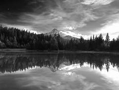 Mt. Hood x 2 (bkhaugan.1971) Tags: bw mountain reflection mt hood