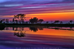 Sunset... (M Atif Saeed) Tags: pakistan sunset lake color reflection nature water colors landscape punjab  lahore  atifsaeed gettyimagespakistanq1