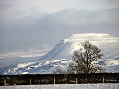 Ingleborough from Cantsfield (Lune Rambler) Tags: winter snow rural landscape northyorkshire agricultural yorkshiredales hedges ingleborough wintersbeauty oltusfotos lunerambler tripleniceshot