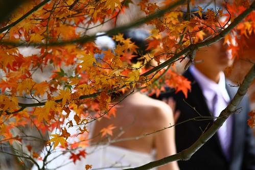 衝到福壽山拍婚紗,真的是很拼。