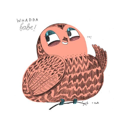 BABE OWL