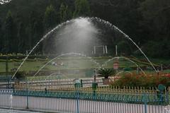 Brindavan 002