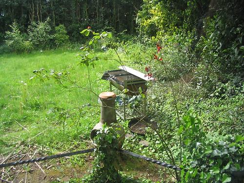 Garden before