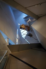 Royal Ontario Museum (nmg+) Tags: skeleton architechture sony angles rom royalontariomuseum a300 sigma1020mm