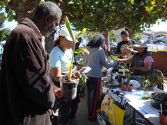 Richmond United States (350.org) Tags: unitedstates richmond 350 21397 350ppm uploadsthrough350org actionreport oct10event