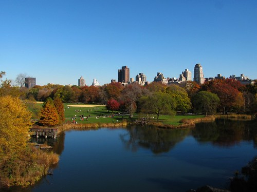 Turtle Pond and Great Lawn in Central Park