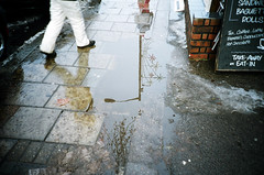 lampuddle III (jonny2love) Tags: london film lomolca 400asa fujisuperior
