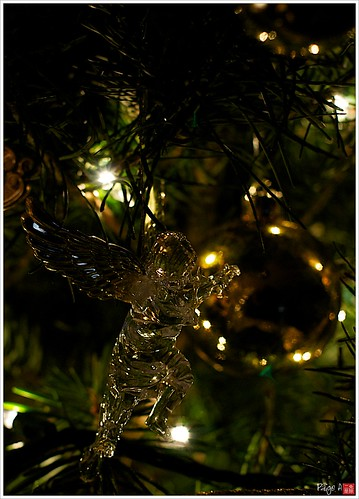 Day 348 - Angels in the Tree