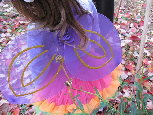 Fairy Princess wings