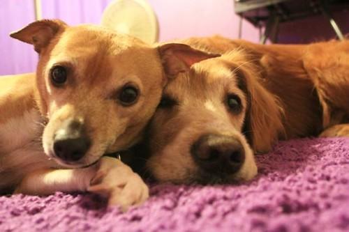 Best friends.
