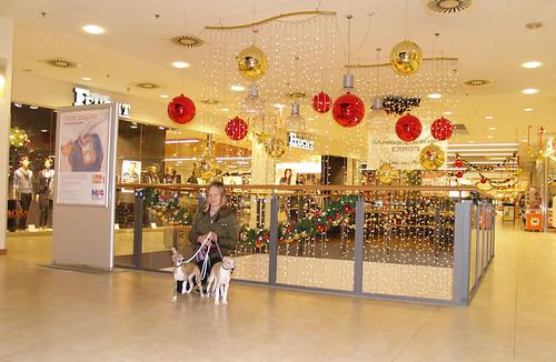 A-B Shopping1