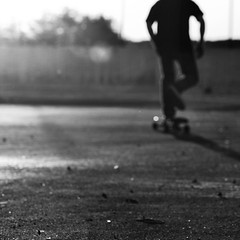 (Pier-Luc) Tags: blackandwhite bw silhouette square nikon dof bokeh pov board bn skate longboard champlain skateboard nikkor carré d60 105mm blancetnoir nikond60 nikkor105mmf28gvrmicro