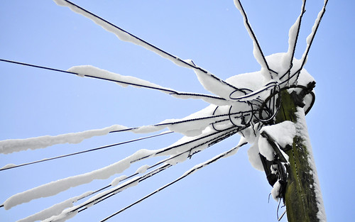 Snow-Covered Cables