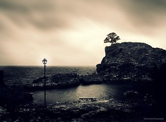 Change of Seasons (Violet Kashi) Tags: sea sky sunlight tree silhouette bench bay solitude mood gloomy sunday atmosphere ps explore greece lamppost melancholy frontpage ambience aura sliders hss cs5
