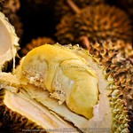 Bankerohan Market Davao: My First Taste of Durian